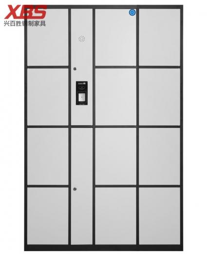 智能指纹储物寄存柜十二门 ,钢制铁皮储物寄存柜