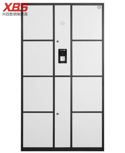 智能指纹寄存储物柜 八门 ,钢制铁皮储物寄存柜