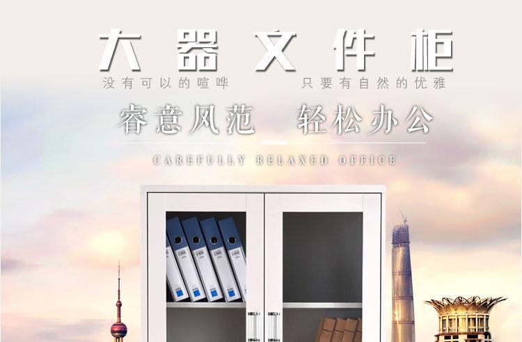 深圳兴百胜文件柜厂家大器械钢制文件柜