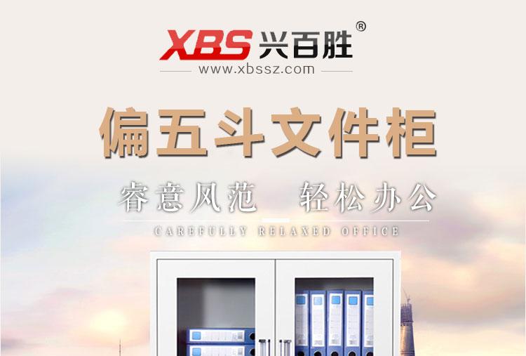 深圳兴百胜钢制铁皮文件柜生产厂家